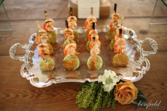 party-caterer