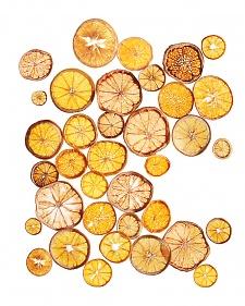 Citrus Crisps
